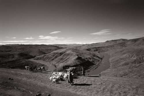 Fine Art Black and White photography-Africa and India