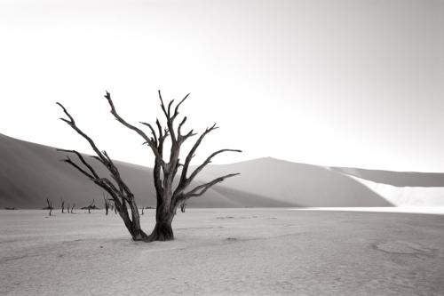 Sossusvlei, Namibia - Fine Art Black and White photography-Glen Green Photography